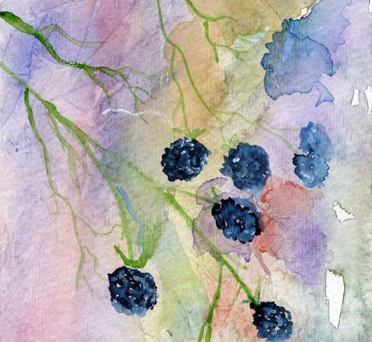 Blackberries (#276)