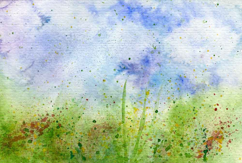 Grass and flowers  (#289)
