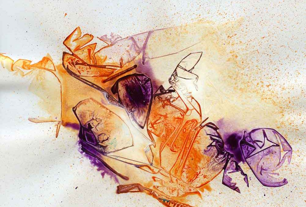 Orange and purple abstract (#1341)