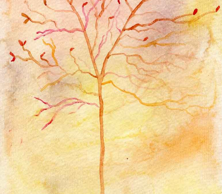 Autumn tree (#304)