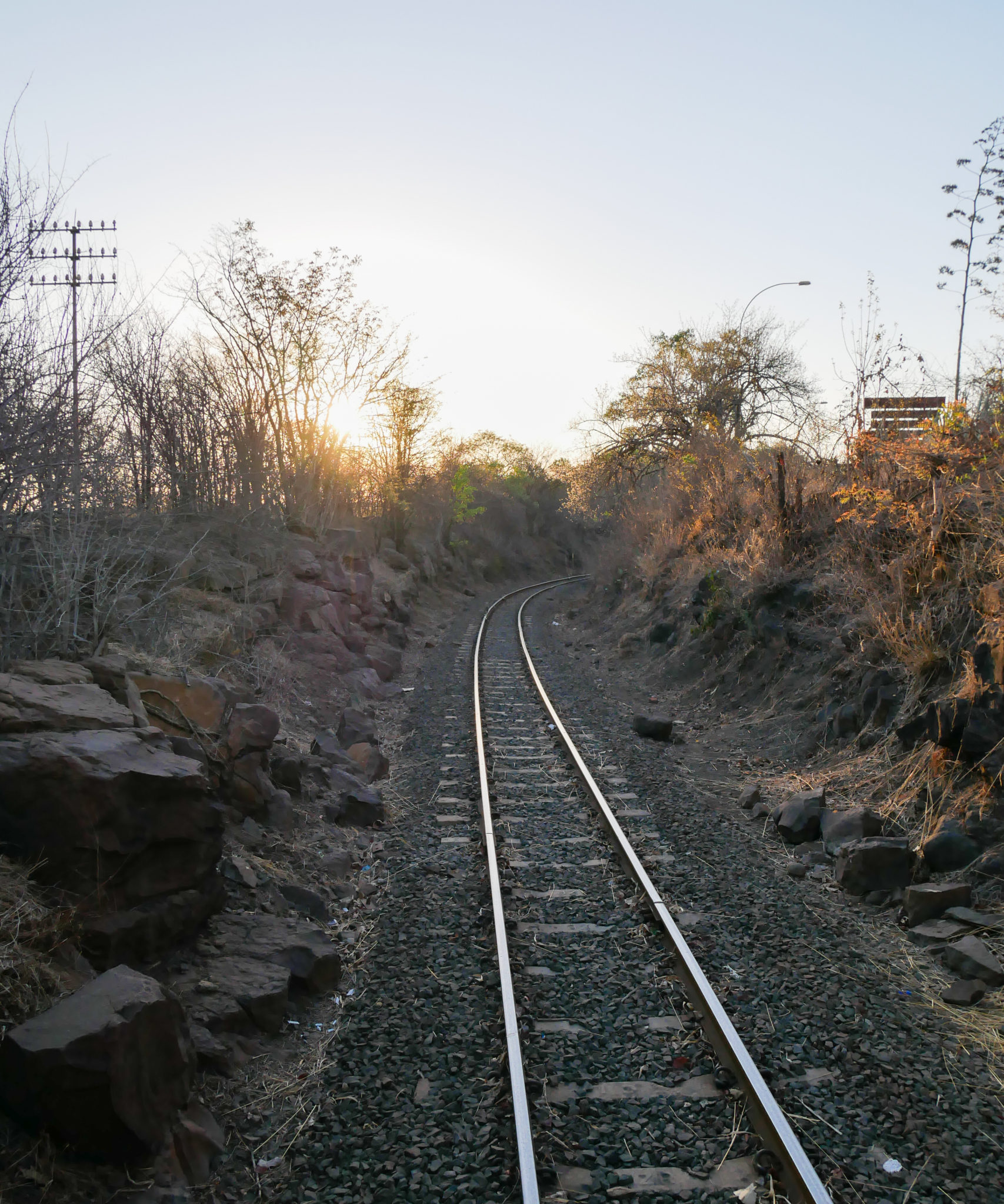 Train tracks viewed from the back of the Royal Livingstone Express train