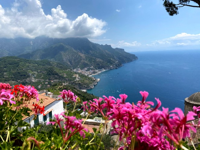 a view of the Amalfi coast Italy, with pink flowers in the foreground