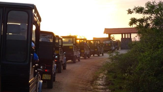 a line of Jeeps at the entrance to Yala National Park, Sri Lanka