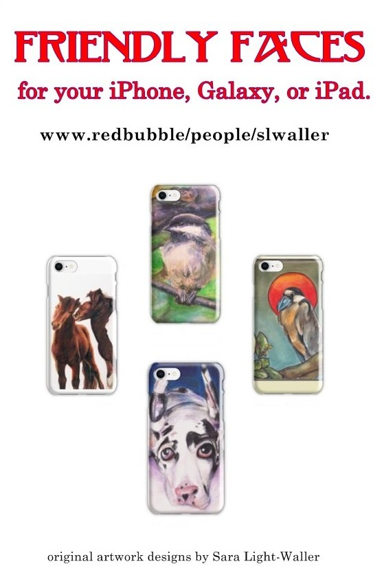 Friendly Faces iPhone Cases ad no border