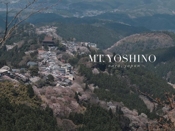 mt. yoshino