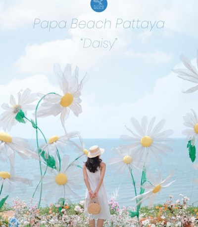 Papa beach pattaya