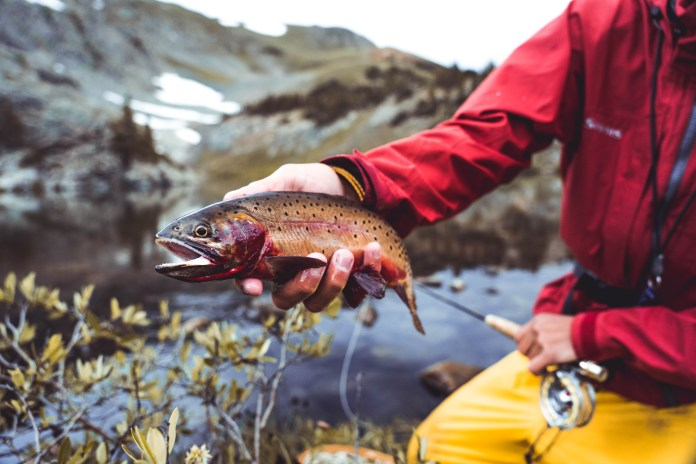 6 Tips to be More Successful at Fishing High Alpine Lakes thumbnail