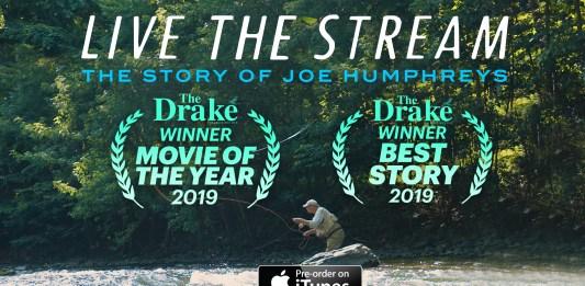 live the stream movie winner