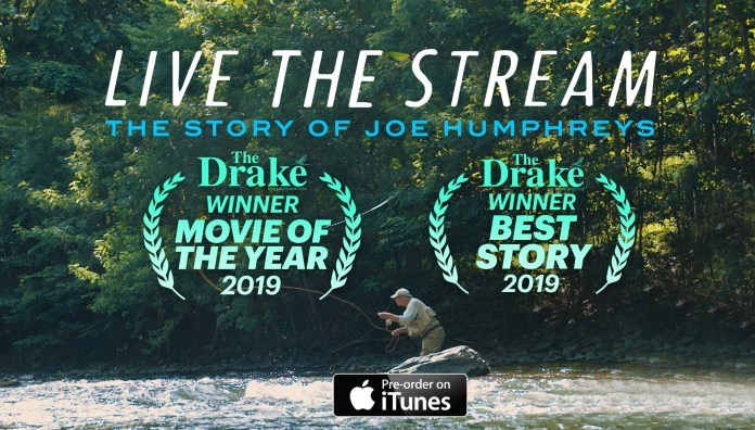 live the stream movie winner