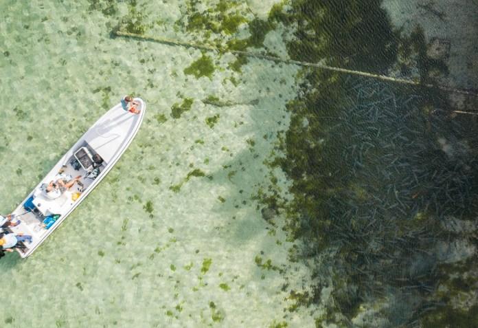 Lodge Spotlight: Thatch Caye Island Resort – Blue Horizon Belize thumbnail