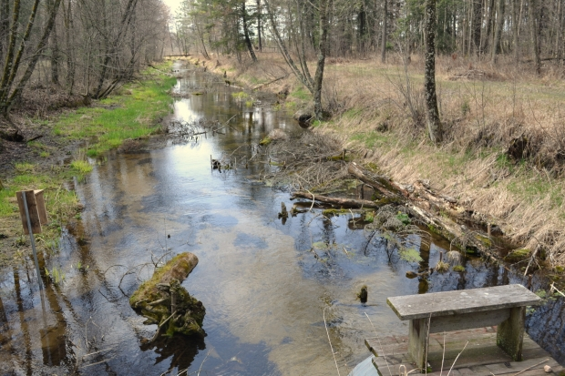 Creek with underwater structure