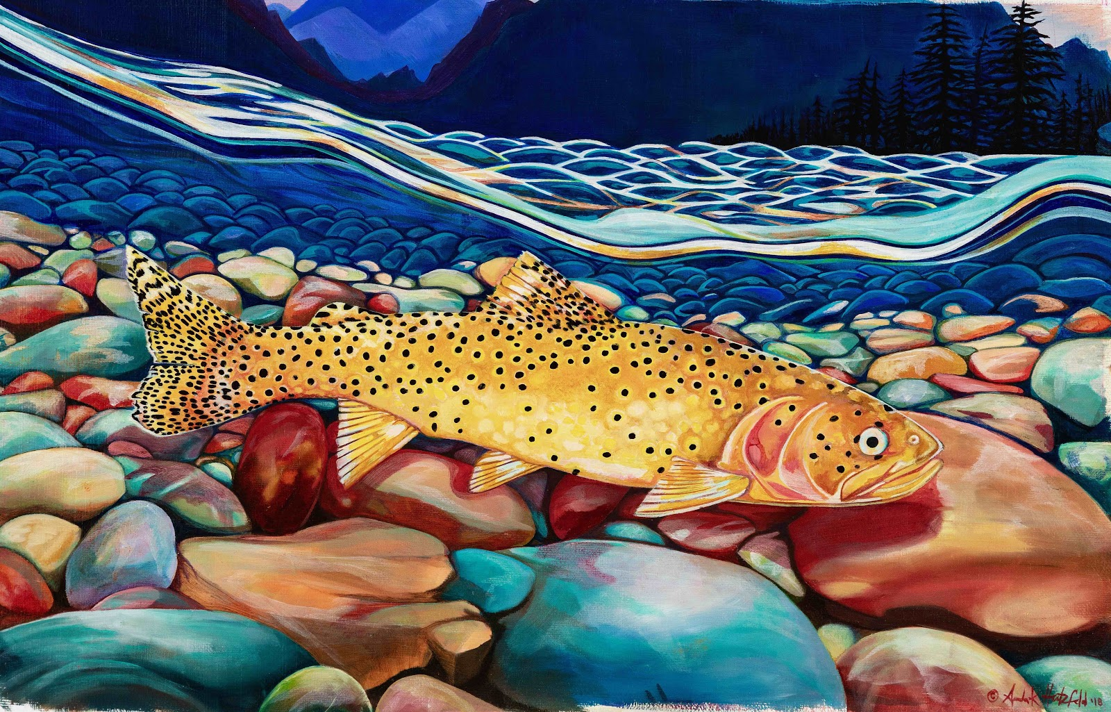 Painting of a cutthroat trout swimming in a stream