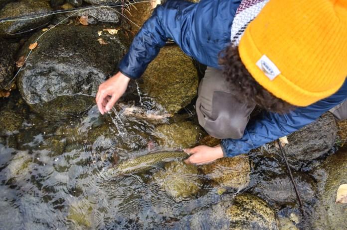 alaska fall fishing keep fish wet