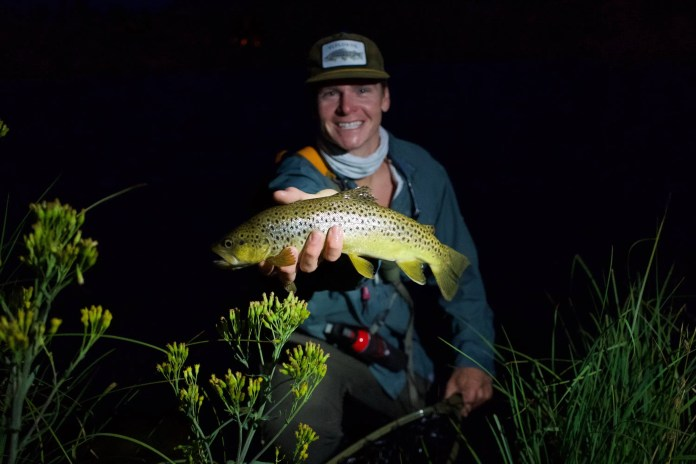 Angler holding a Montana brown trout at night