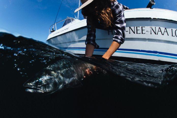 Dundas Island Fishing BC salmon