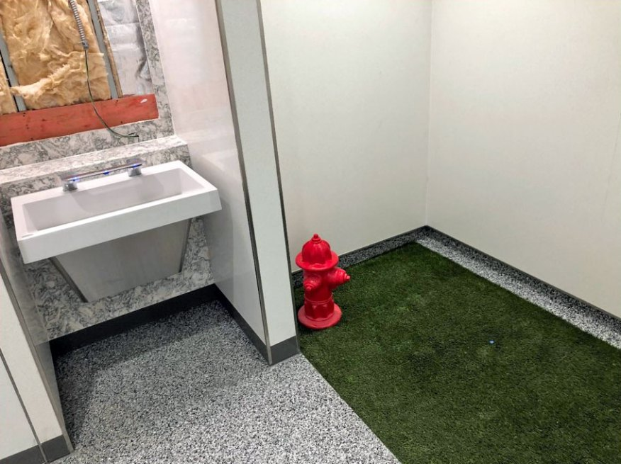 May 2021 B Concourse Pet Relief Area