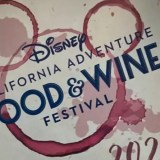 Disneyland 'limited-time experience'