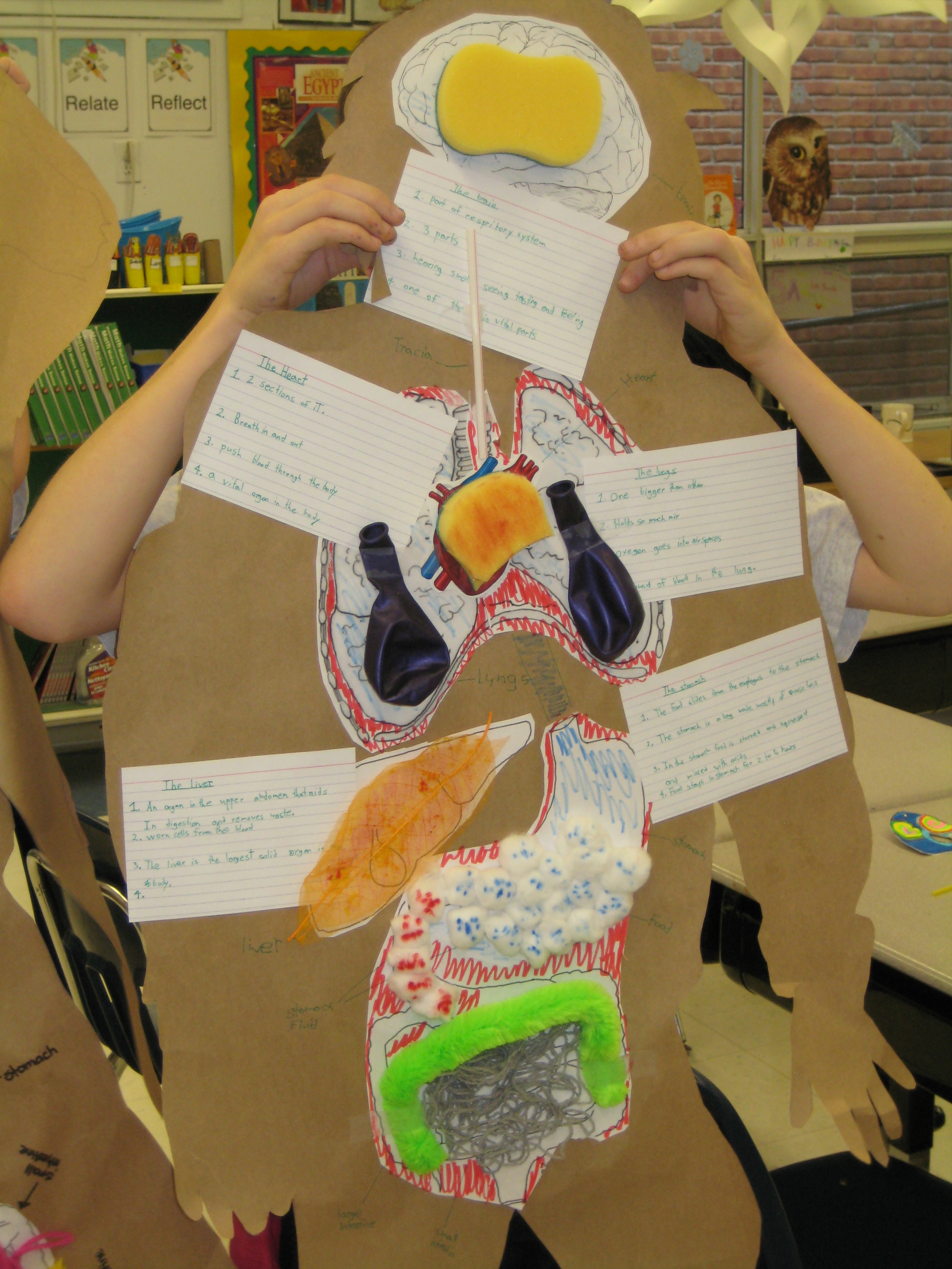 Science The Human Body Grade 5 Final Assessments