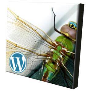 Fly 'pinions was born on wordpress