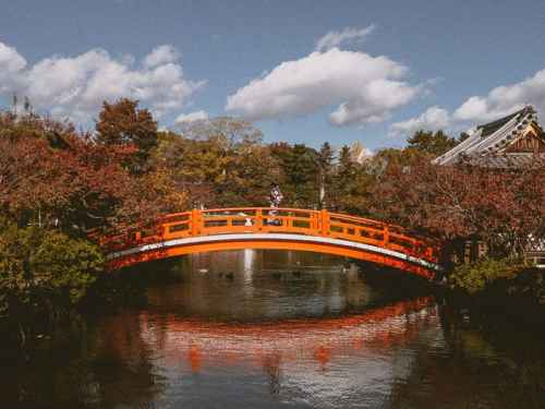 25 Beautiful photos to inspire you to travel to Japan in Fall (Autumn)
