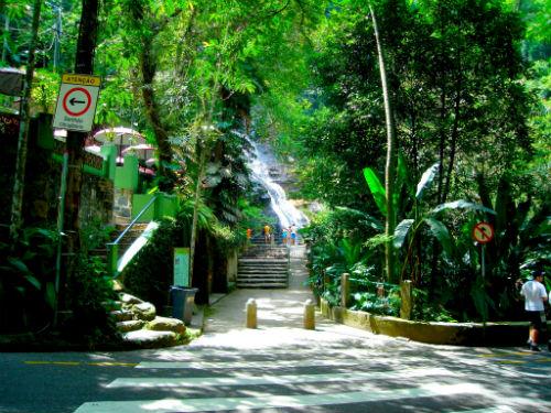 parque-nacional-da-tijuca