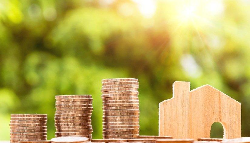Savings Cushion of Coins