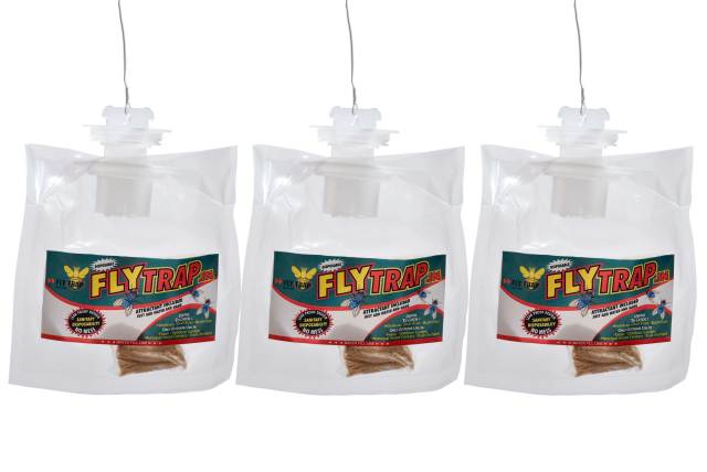 Disposable-Fly-Trap-FlyTrap.in