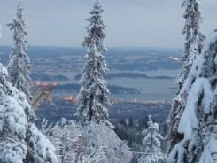 Oslofjord mit Hafen