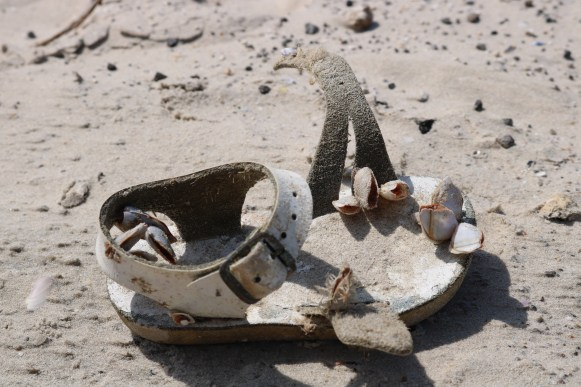 Baby Sandal from the Sea