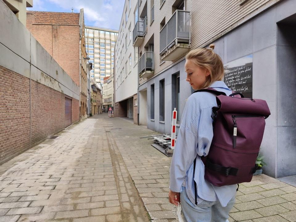 Avo Brick Maroon Backpack