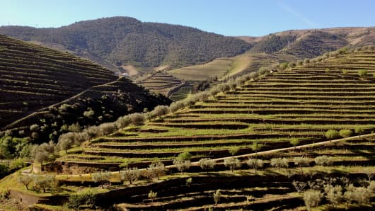 Portugal's Douro Valley