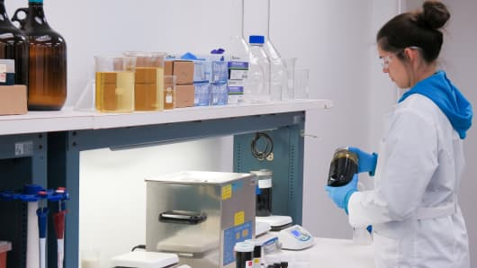 A lab technician at Vireo Health in Johnstown, NY.