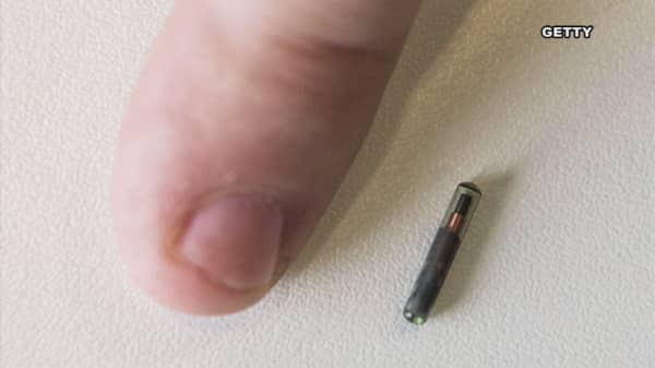 You will get chipped - eventually