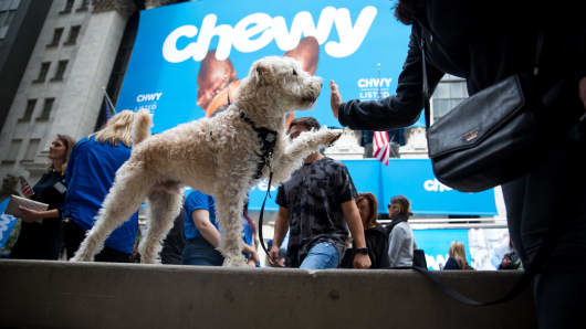 A dog hi-fives it's owner in front of the New York Stock Exchange (NYSE) during Chewy Inc.'s initial public offering (IPO) in New York, U.S., on Friday, June 14, 2019.