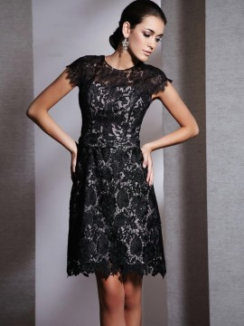 Lace A Line Little Black Dress with Cap Sleeves