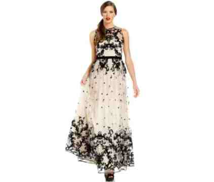 Adrianna Papell Sleeveless Velvet Embroidered Gown