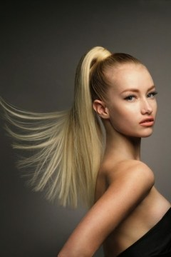 Sleek High Ponytail