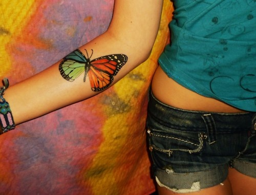 Four-Winged Colorful Butterfly