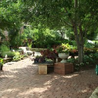 An Oasis called Blumen Gardens