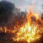 Incendio en pastizales de una finca de Pocito