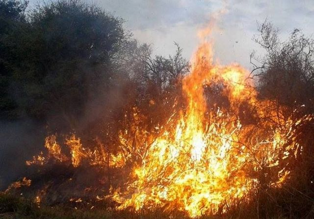 Incendio sofocado en finca de Pocito