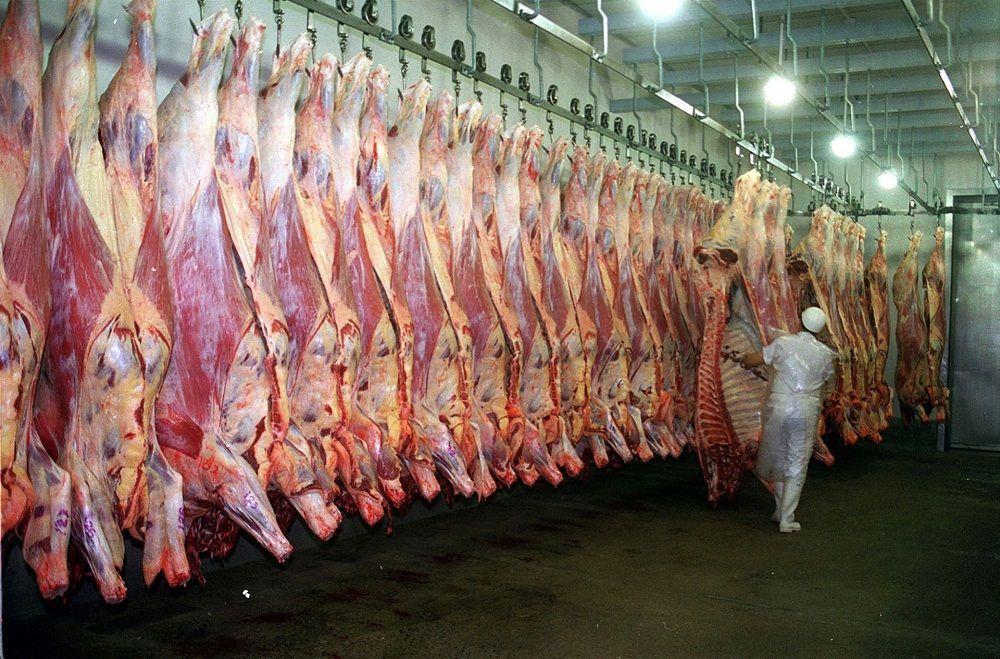 la exportación de carne la cierra el gobierno