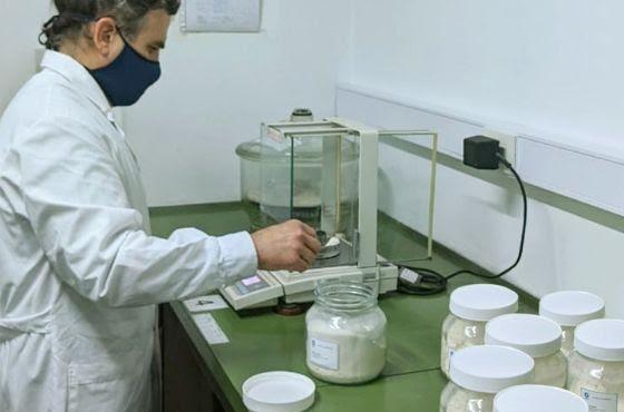 La harina de trigo argentina mejorará su competitividad internacional