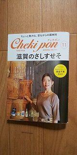 Chekipon