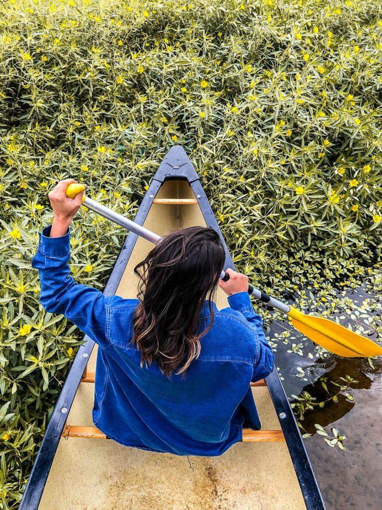 Descente Canoe Loire Sauvage