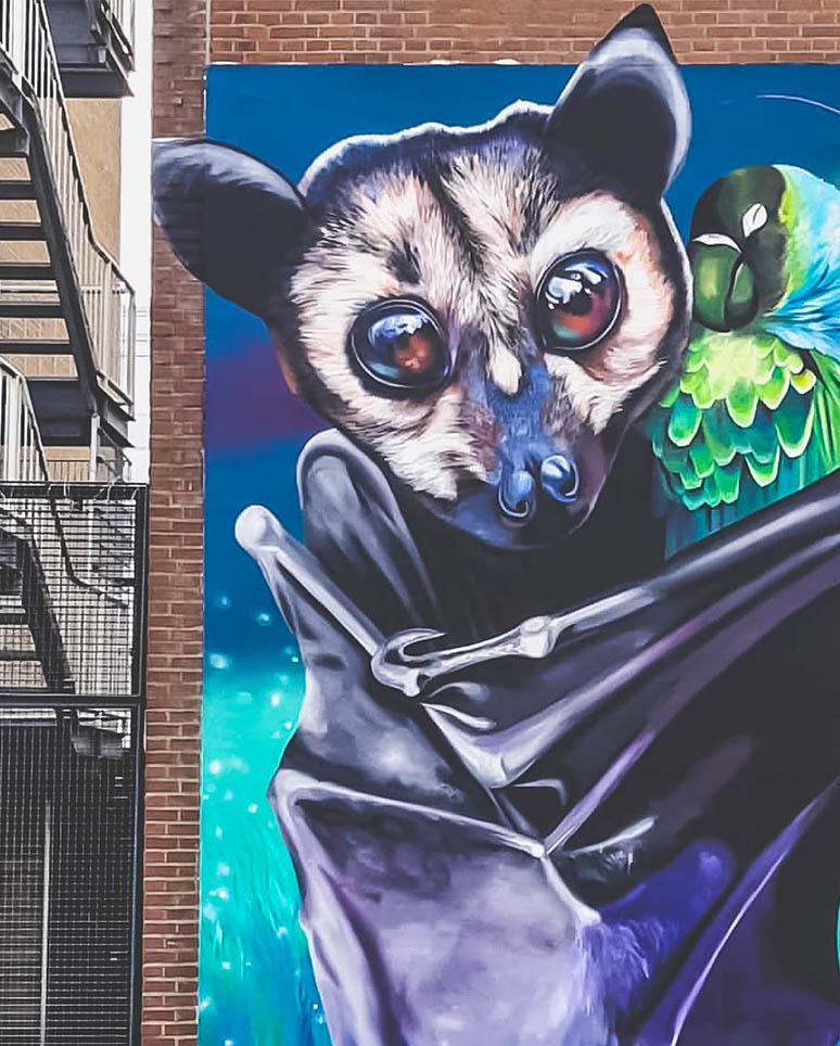 Street Art Rotterdam 2019