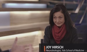 Joy-BigThink