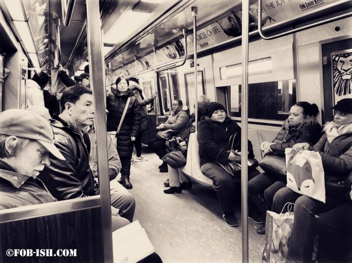 New York 101: My Daily Commute on the Subway