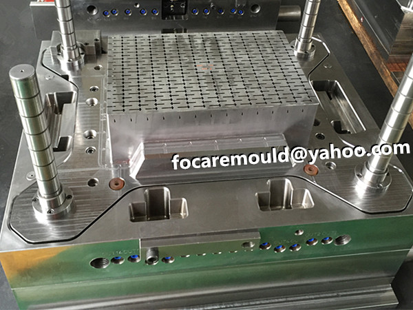 sprout crate mold