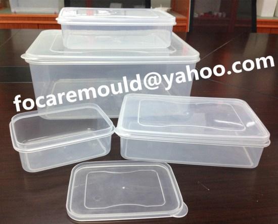 fresh keep box mold